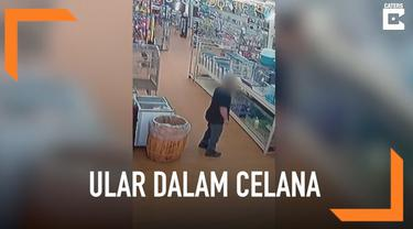 Seorang pria tertangkap kamera mencuri ular piton dan menyembunyikannya di dalam celananya.
