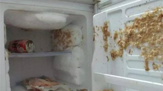 Tak semua makanan atau minuman bisa dimasukkan ke dalam kulkas, apalagi di bagian pembekunya.