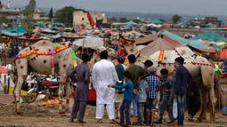 Orang-orang melihat unta-unta yang dihias di sebuah pasar ternak untuk Idul Adha di Islamabad, Pakistan, Minggu (26/7/2020). Para pedagang menghias unta agar hewan kurban yang dijualnya dilirik pembeli. (AP Photo/Anjum Naveed)