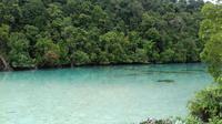 Kehe Daing yang berarti lubang ikan ini merupakan laguna cantik di Pulau Kakaban, Kepulauan Derawan. (Liputan6.com/Ramdania El Hida)