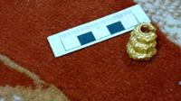 Harta karun emas yang diduga peninggalan Kerajaan Sriwijaya, yang ditemukan di Kecamatan Cengal Kabupaten OKI Sumsel (Dok. Toko Levi Emas / Nefri Inge)