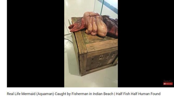 Cek Fakta - klaim  manusia bertubuh ikan