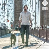 Keanu Reeves di John Wick: Chapter 2. (Collider)