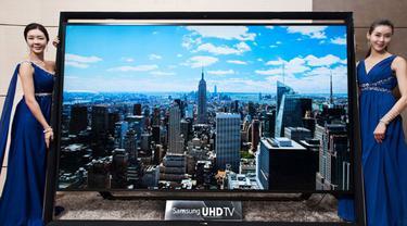 tv-131231b.jpg