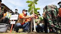 Upaya penguatan mitigasi bencana gempa bumi dan tsunami berbasis vegetasi di wilayah Pesisir Selatan Jawa Tengah, Kepala BNPB Doni Monardo menanam pohon Butun di Cilacap, Rabu, 28 April 2021. (Badan Nasional Penanggulangan Bencana/BNPB)