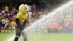 1. Maskot dari Watford bermain air sesaat jelang laga Premier League melawan Arsenal di Stadion Vicarage Road, Watford, Inggris, Sabtu (27/8/2016). (Reuters/Andrew Boyers)