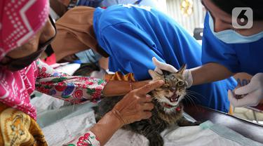 FOTO: Cegah Rabies, Hewan Peliharaan Jalani Vaksinasi Gratis di Rawa Jati