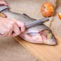 Tips membersihkan sisik ikan./Copyright shutterstock.com