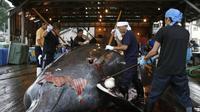 Sejumlah pihak masih melakukan perburuan paus dewasa ini, meskipun mendapatkan kecaman dari konservasionis dan aktivis hak-hak hewan (AFP Photo)