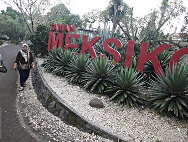 Pengunjung berjalan di sekitar Taman Meksiko, Kebun Raya Bogor, Jawa Barat, Senin (28/3). Di taman tersebut, terdapat 100 jenis kaktus, agave, yucca, dan sukulen yang berasal dari gurun Amerika serta Asia. (Liputan6.com/Immanuel Antonius)