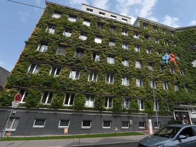 Foto pada 22 Juli 2020 menunjukkan bagian luar gedung kantor pusat MA 48 di Wina, Austria. Fasad kantor pusat MA 48 dilapisi dengan tanaman hijau, yang memiliki efek positif seperti membentuk iklim mikro, melindungi rangka bangunan dari hujan dan tumpukan kotoran, dan menyejukkan. (Xinhua/Guo Chen)