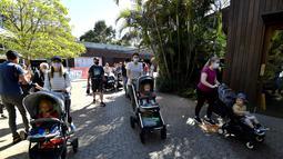 Keluarga memasuki Kebun Binatang Taronga di Sydney (18/10/2021). Kebun binatang Taronga membuka kembali pintunya bagi pengunjung yang divaksinasi setelah pencabutan pembatasan penguncian Sydney. (AFP/Saeed Khan)