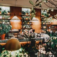 Menikmati sajian lezat di tengah kota dengan suasana alam di Social Garden (Foto: instagram/social.garden)