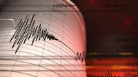 Ilustrasi seismograf. (iStockphoto)