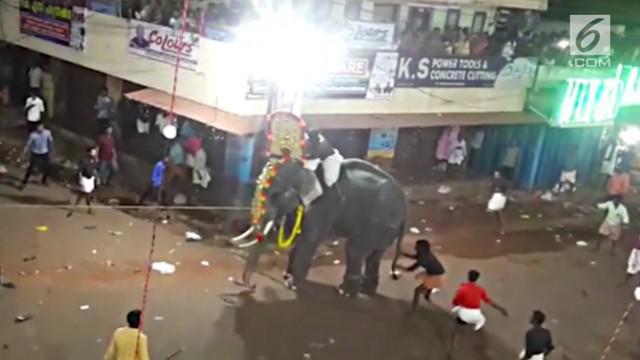 Seekor gajah mengamuk saat upacara di kuil, India. Untuk menjinakannya, sang gajah akhirnya disuntik obat penenang.