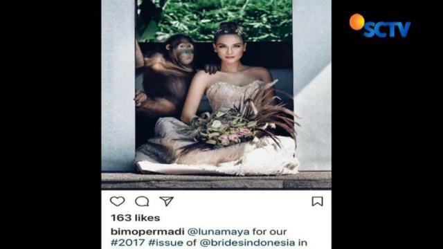 Borneo Orangutan Survival Foundition (BOSF) menyayangkan tindakan Luna Maya yang tak mengetahui perlindungan satwa liar.