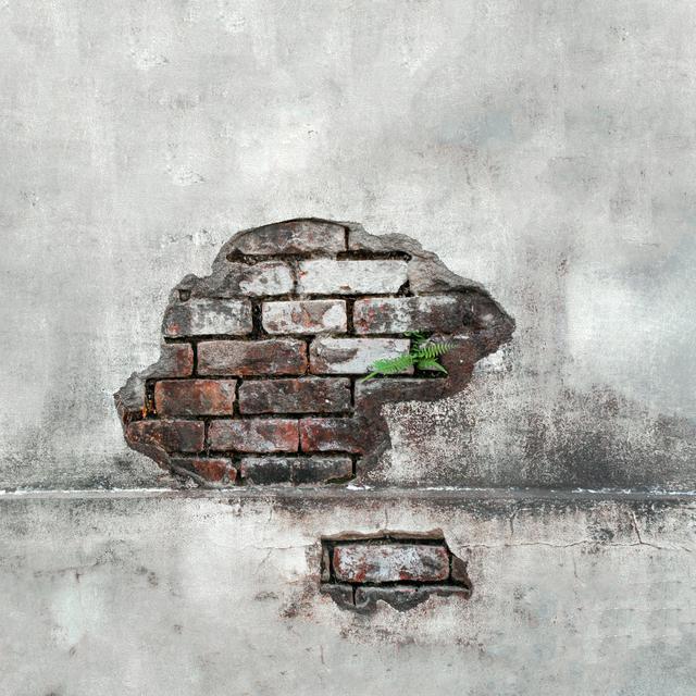 Cara Menambal Pipa Bocor Dalam Tembok : Cara Memperbaiki Pipa Air Bocor Di Tembok Terkena Mesin ...