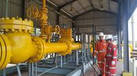 PGN membangun  fasilitas Liquid Natural Gas (LNG) Terminal di Pelabuhan Tanjung Perak, Teluk Lamong, Surabaya, Jawa Timur yang akan beroperasi secara bertahap pada tahun ini.