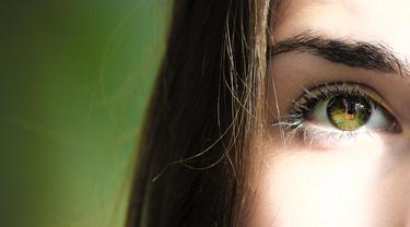 Penyakit Pada Retina Mata