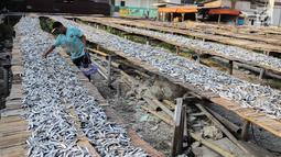 Pekerja menyelesaikan pengolahan ikan asin di kawasan Muara Angke, Jakarta, Kamis (4/7/2019). Ikan asin tersebut dijual dengan harga Rp 15 ribu hingga Rp 30 ribu per kilogram. (Liputan6.com/Faizal Fanani)