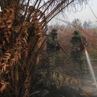 Personel TNI berupaya melakukan pemadaman di tengah pekatnya asap kebakaran lahan gambut di Kampar, provinsi Riau pada 17 September 2019. Kebakaran hutan dan lahan (karhutla) yang masih terjadi membuat sejumlah wilayah di Provinsi Riau terpapar kabut asap. (AP/Rafka Majjid)