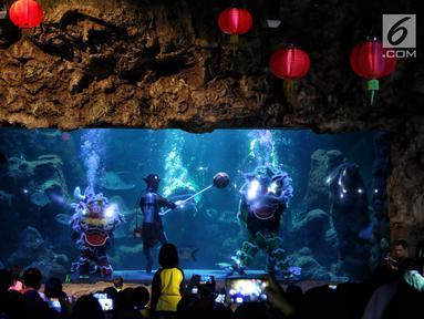 """Pemain barongsai tampil di dalam air di Seaworld Ancol, Jakarta, Minggu (3/2). Pertunjukan dalam rangka memeriahkan Tahun Baru Imlek 2570 tersebut mengangkat tema """"The Legend of 12 Shio"""" yang digelar hingga 5 Februari 2019. (Liputan6.com/Johan Tallo)"""