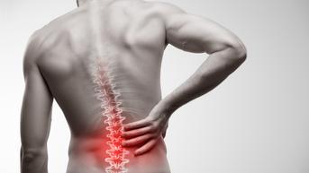 Lakukan Peregangan Saat Punggung Belakang Bagian Bawah Sakit Akibat Duduk Terlalu Lama