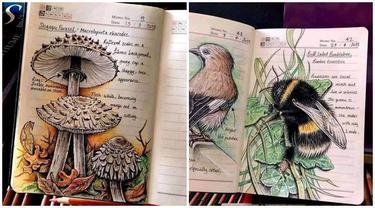 Wanita Ini Tunjukkan Gambar di Buku Tulis Biologinya Bak Ensiklopedia, Bikin Takjub