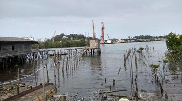 Kerusakan mangrove. (Foto: Liputan6.com/Ajang Nurdin)