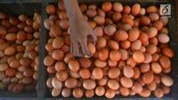 Penjual merapikan telur dagangannya di Pasar Minggu, Jakarta, Rabu (24/7). Harga telur ayam mengalami penurunan di angka Rp 26 ribu per kilo. (Merdeka.com/Imam Buhori)