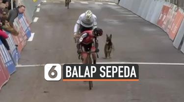 vertical balap sepeda