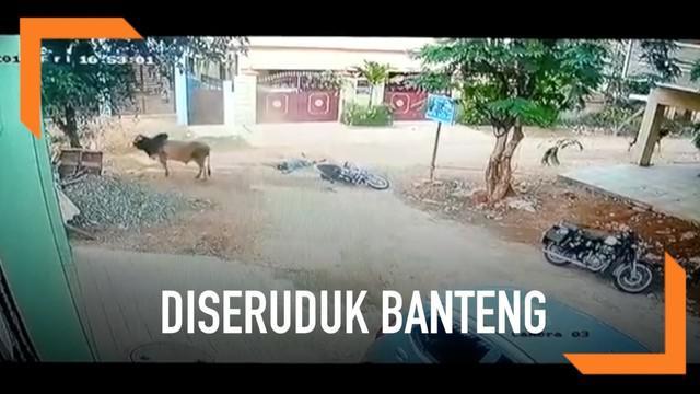 Momen mengerikan terekam kamera saat pengendara motor di India diseruduk banteng yang melintas tiba-tiba.