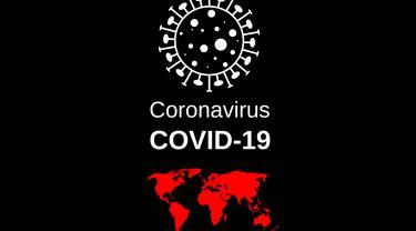 virus-coronavirus-sars-cov-2-flash-4915859
