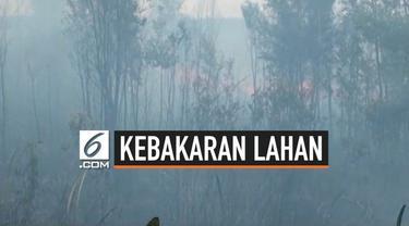Kebakaran lahan yang sudah berlangsung seama sepekan di Kabupaten Ogan Komering Ilir (Oki) sulit dipadamkan. Api sult dipadamkan karena semprotan air tidak sampai ke dasar lahan gambut sehingga jika tertiup angin bara api kembali menyala.