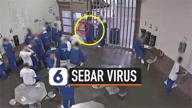 THUMBNAIL VIRUS