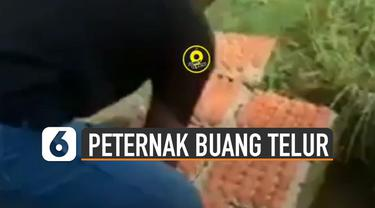 Beredar video seorang pria membuang puluhan telur di sawah.