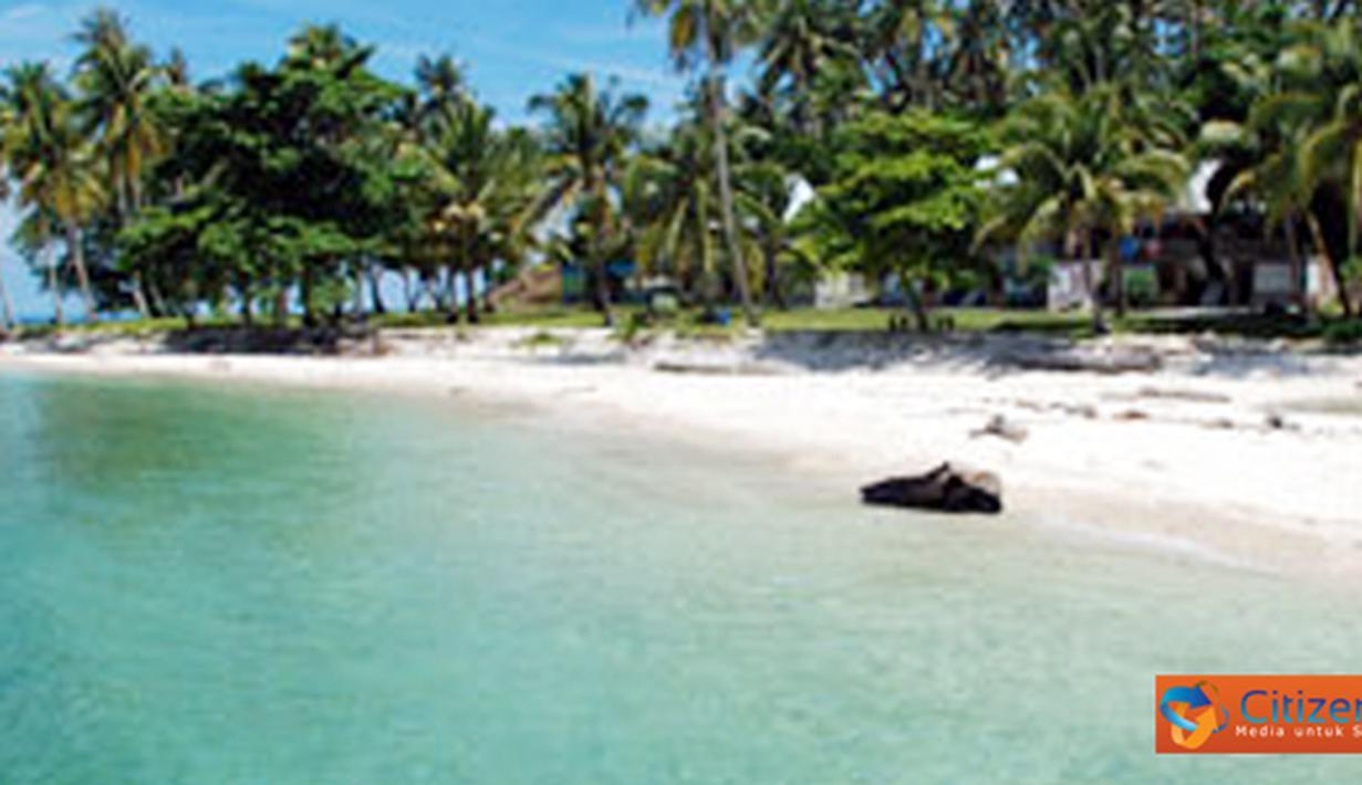 Citizen6, Kalimantan: Pulau Randayan memiliki pasir seluas 4,77 hektar, karang hidup 4,50 hektar, karang mati 3,69 hektar, dan lamun 0,63 hektar. (Pengirim: Devin Lim)