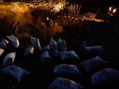 Jesus Luis Remiro, Salvador Remiro dan Jose Mari Nieva mengambil arang  tradisional di Viloria, Spanyol utara (11/9). Hanya segelintir warga yang dapat membuat arang tradisional dari kayu bakar. (AP Photo/Alvaro Barrientos)