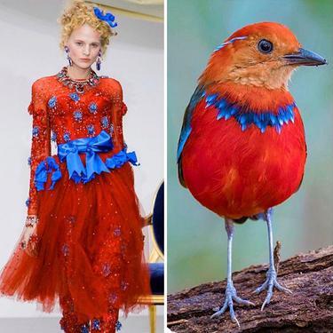 Bikin Takjub, 10 Desain Gaun Ini Terinspirasi Dari Alam