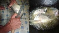 Ikan Arwana Pria Ini Digoreng Sang Ayah. (Sumber: Instagram.com/mas_bayu_oky dan Instagram.com/solokini)