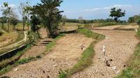 Kementerian Pertanian (Kementan) bersama Pemerintah Daerah Kabupaten Magetan pun bergerak cepat mengambil langkah antisipasi menghadapi kekeringan di Kabupaten Magetan.