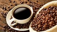 Kafein | via: jejamo.com