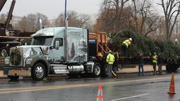Pekerja bersiap untuk mendirikan pohon Natal raksasa di bagian barat Gedung Capitol AS di Washington, Senin (26/11). Pohon Natal setinggi 24 meter itu diambil dari Hutan Nasional Willamette di Oregon. (Mark Wilson/Getty Images/AFP)