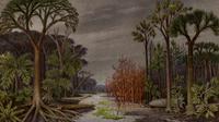Ilustrasi pohon-pohon dari masa Permian akhir, termasuk spesies Gigantopterid. (Sumber Potonie (1899) Lehrbuch der Pflanzenpalaeontogie. Ferdinand Dümmler Verlagsbuchhandlung, Berlin via seedbiology.de)
