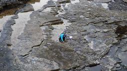 Ilmuwan meneliti jejak kaki dinosaurus yang berasal dari 170 juta tahun di Isle of Skye, Skotlandia, Senin (2/4). Sebagian besar puluhan jejak itu dibuat oleh kerabat tua dari T Rex yang berukuran hingga 1,8 meter (HANDOUT/THE UNIVERSITY OF EDINBURGH/AFP)