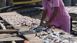 Seorang ibu tengah menjemur ikan asin di kawasan Cilincing, Jakarta Utara, Rabu (9/5). Produksi ikan asin di kawasan tersebut untuk memenuhi kebutuhan di wilayah Jabodetabek. (Liputan6.com/Angga Yuniar)