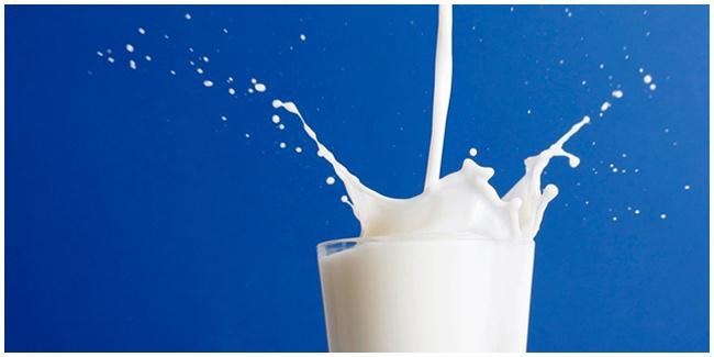 Protein yang ada di dalam susu/copyright Shutterstock.com