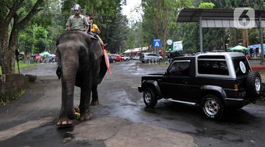 Taman Safari Indonesia Ramai Dikunjungi Wisatawan