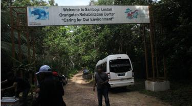 Sekolah Orangutan Kalimantan di Samboja
