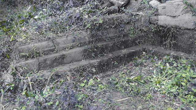 Telah Ditemukan Candi Yang Diduga Lebih Besar Dari Borobudur